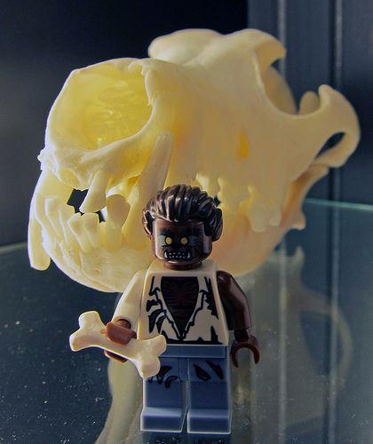 LEGO Collectible Minifigures Series 4 : Werewolf